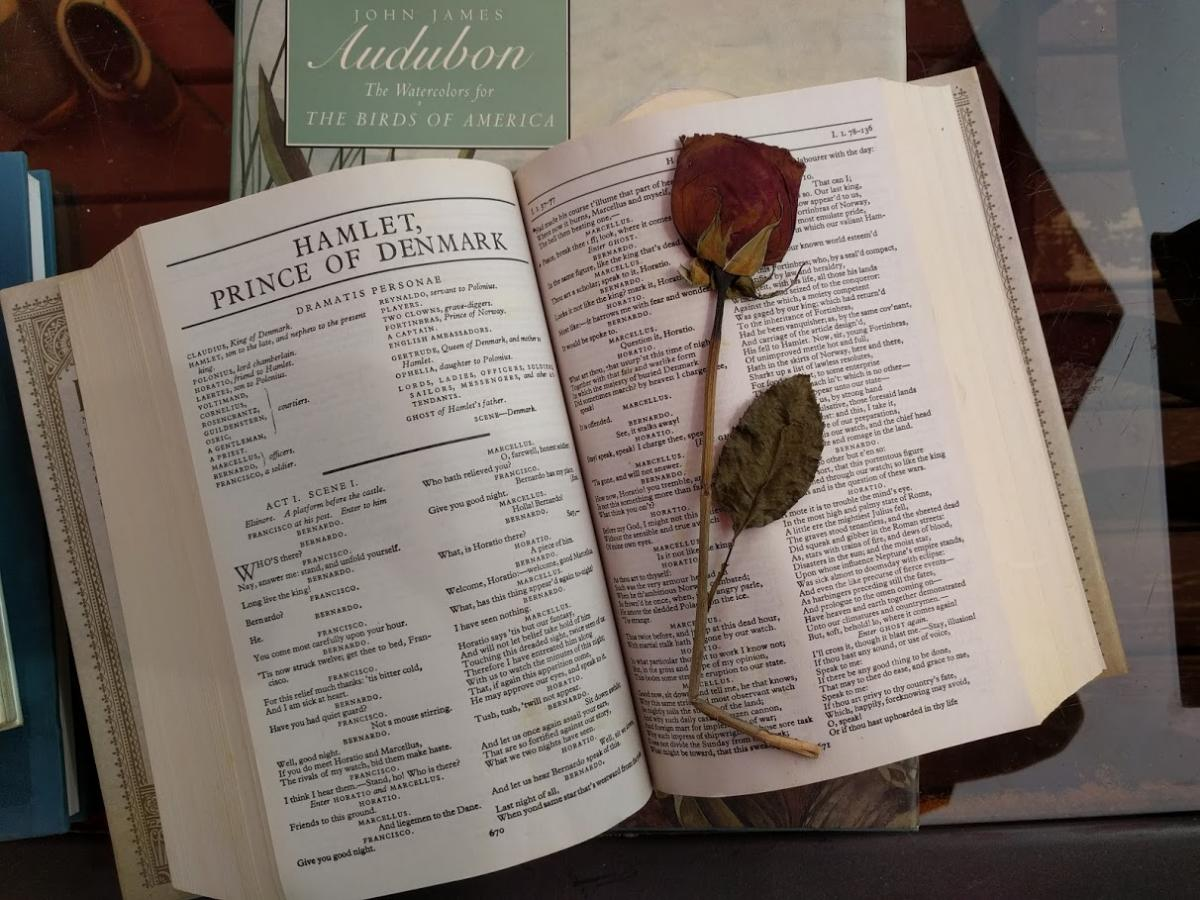 A dired rose resting on a book.